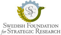 Image of (112671) SSF Individual Grants for Future  Research Leaders