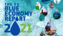 Image of (651558) 2021 EU Blue Economy report – Emerging sectors prepare blue economy for leading part in EU green transition